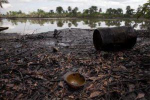 niger-delta-ecosystem