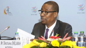 trade-investment-minister-enelamah
